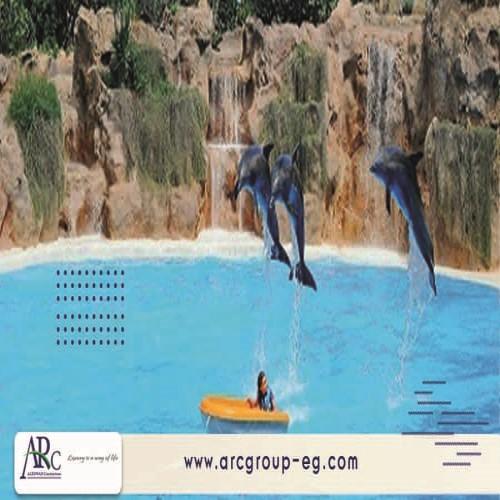 شركات انشاء حمامات سباحة فى مصر